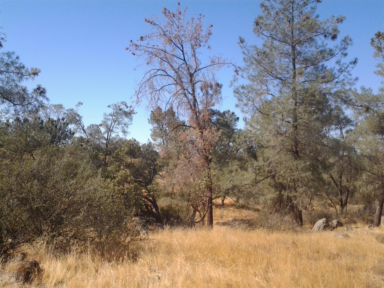 17 Broken Heart Lane, Raymond, CA 93653